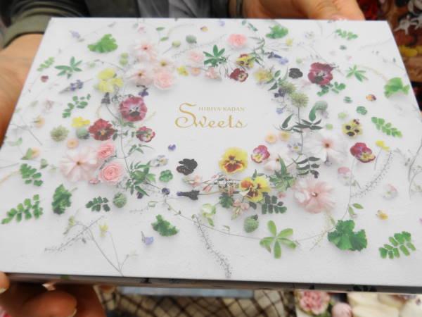 日比谷花壇花咲くローズエクレア